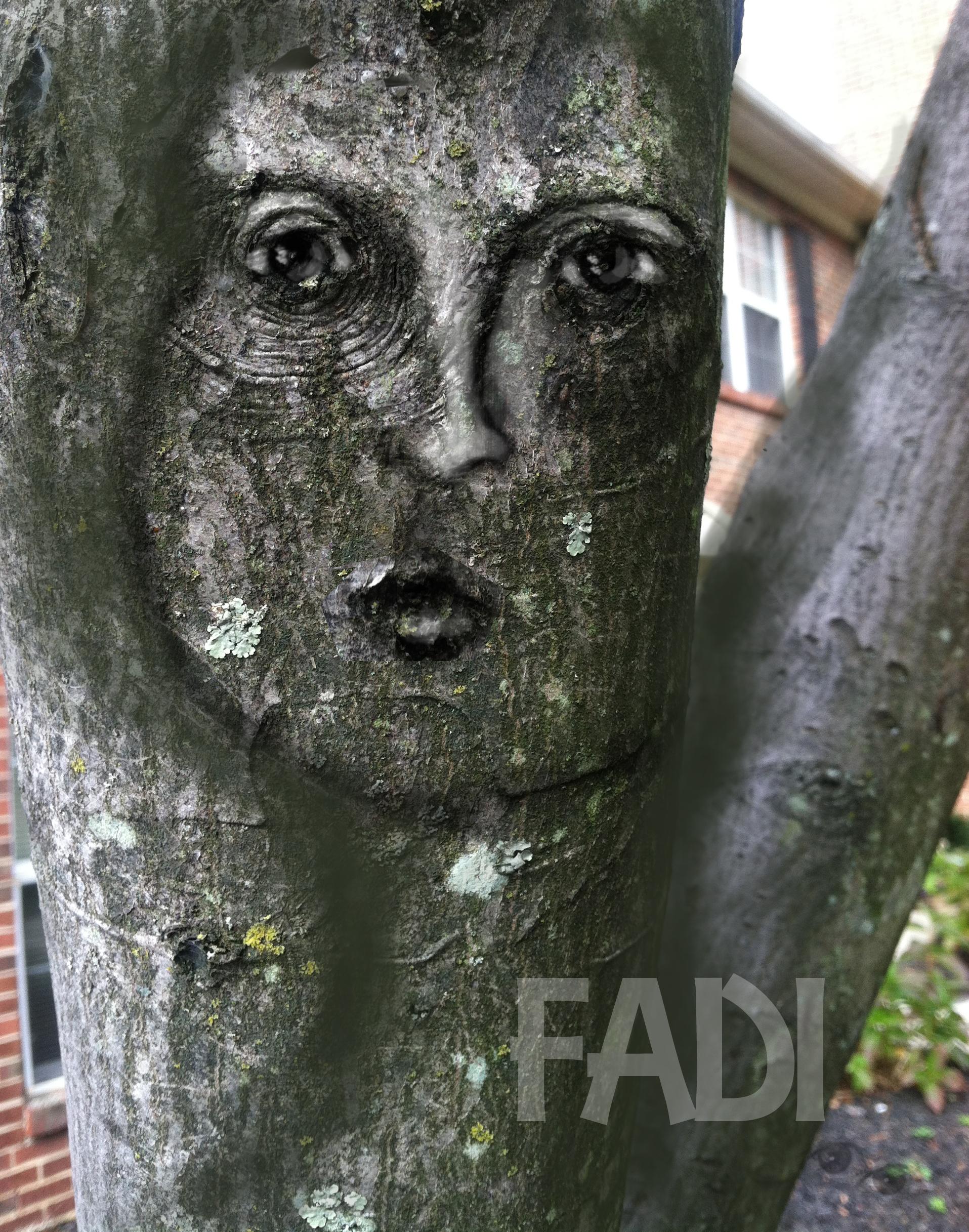 TreePhotoshop