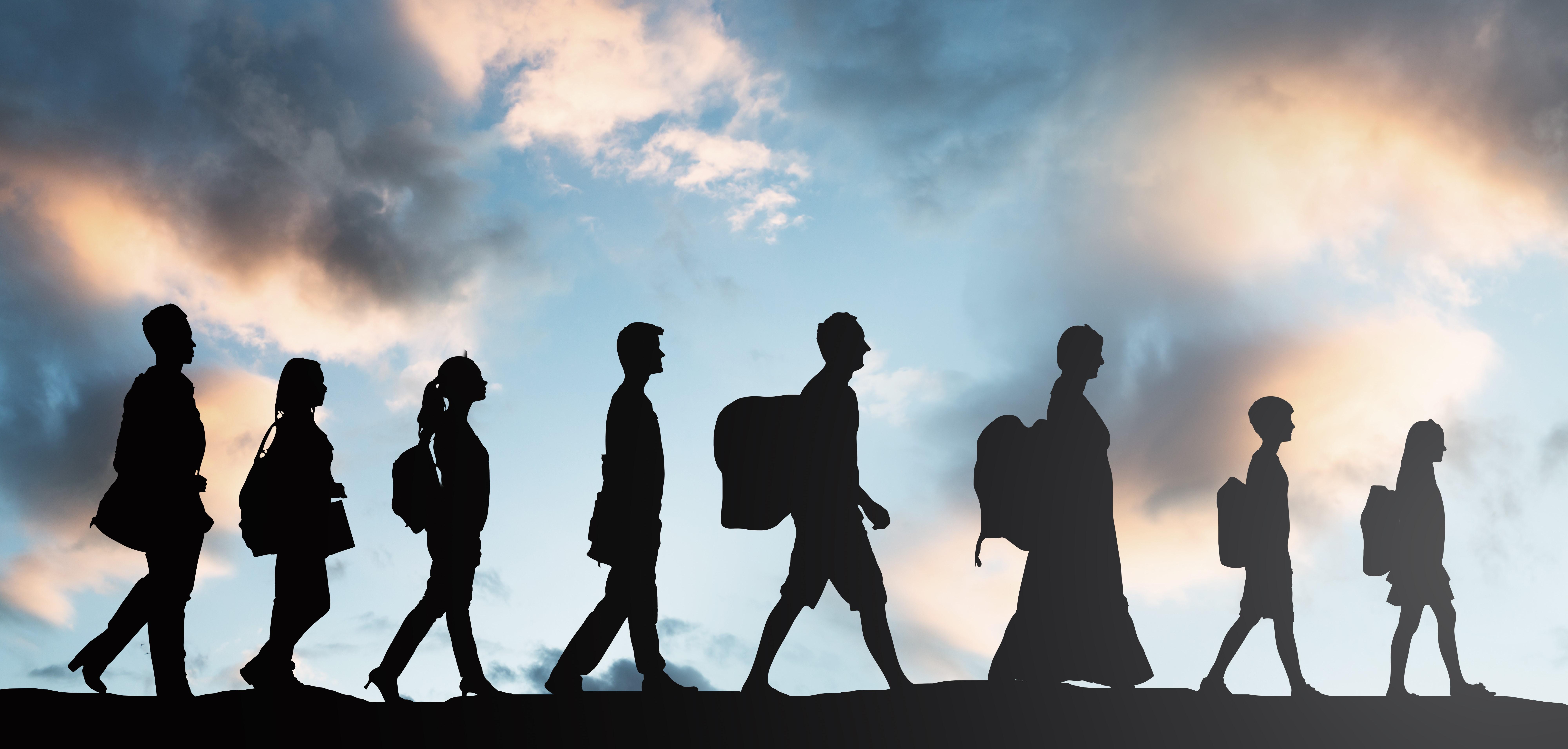 Asylum Journey